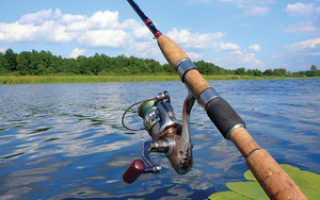 Что нужно для рыбалки на спиннинг