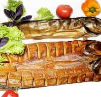 Что такое балык из рыбы