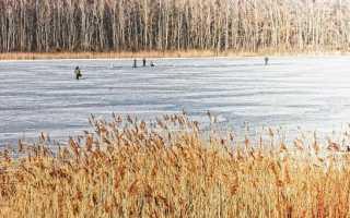 Оптимальное давление для ловли рыбы