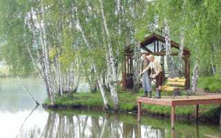 Платная рыбалка истра