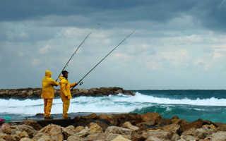 Северо восточный ветер для рыбалки
