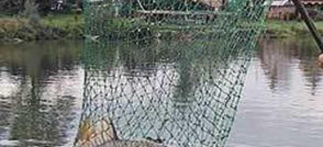 Рыболовный сачок