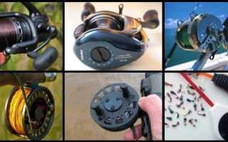 Разновидности катушек для рыбалки