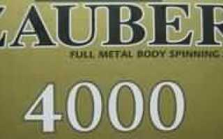 Риоби заубер 4000