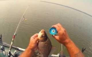 Рыболовная снасть соска