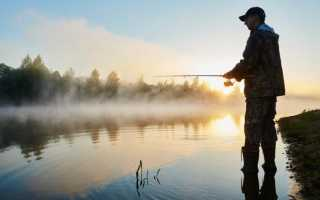Рыбалка на волге летом