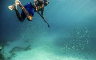 Подводная охота для новичков