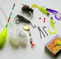 Рыбалка сбирулино