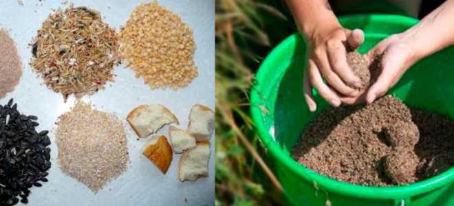 Прикормка для плотвы летом своими руками рецепты