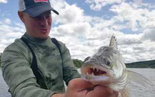 Отчеты о рыбалке ока