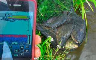 Портативный эхолот для рыбалки с берега