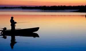 Рыбалка золотой сазан новая рига
