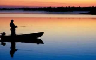 Рыбалка на новой риге золотой сазан