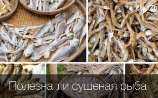 Рыбка сушеная
