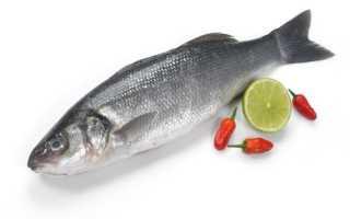 Что за рыба сибас