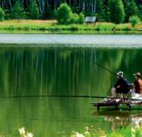Рыбалка на оке в нижегородской области