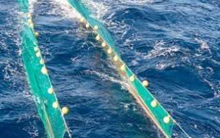 Сетка рыболовная
