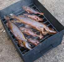 Рецепты холодного копчения рыбы