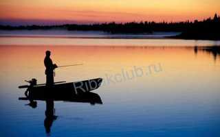 Школа рыбалки
