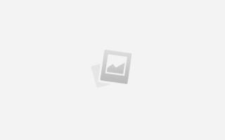 Секреты рыбалки на карася поплавочная удочка